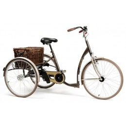 Rower rehabilitacyjny trójkołowy dla dorosłych w stylu RETRO VINTAGE