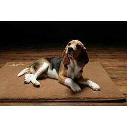 Terapia magnetyczna legowisko terapeutyczne dla Twojego psa