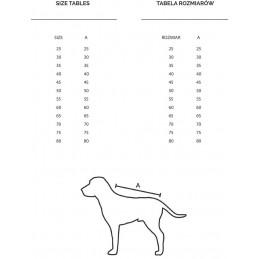 Derka magnetyczna na spacery dla psa, reumatyzm, redukuje ból i obrzęki